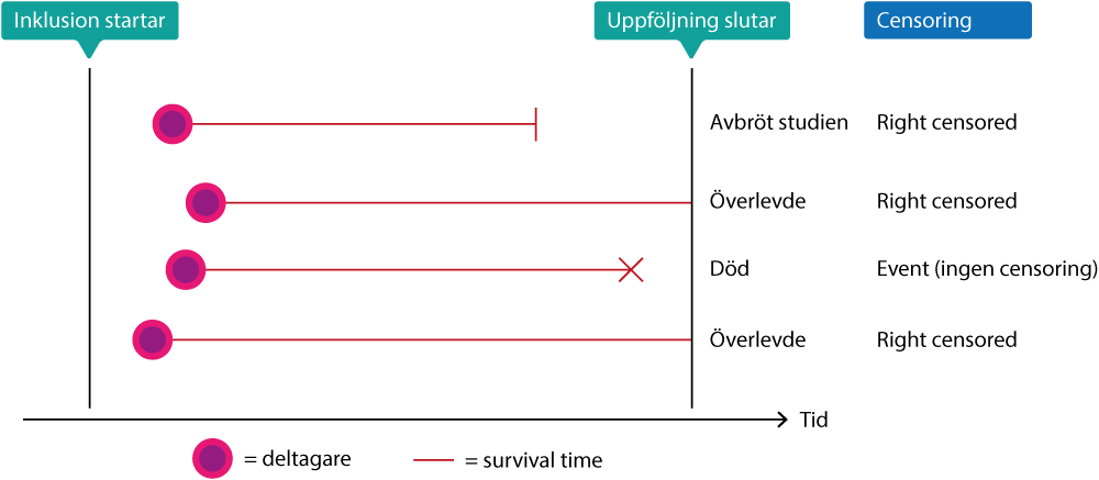 Figur 1. Uppföljning och censoring.
