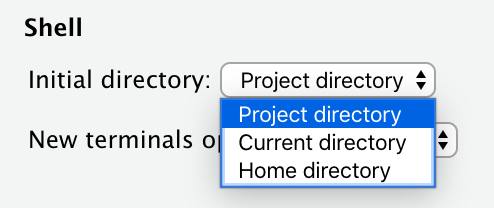 Section of Options dialog showing terminal starting directory